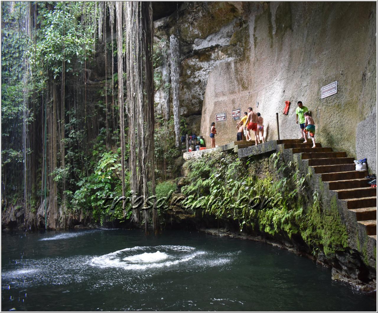 Сенот Ик-Киль (Ik Kil). Здесь можно не только купаться, но и прыгать с высоты.