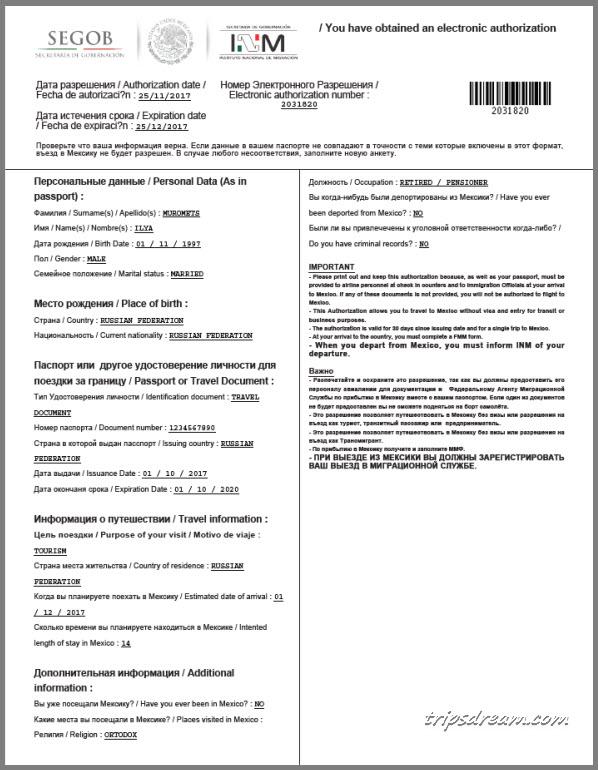 ElectronicAuthorization