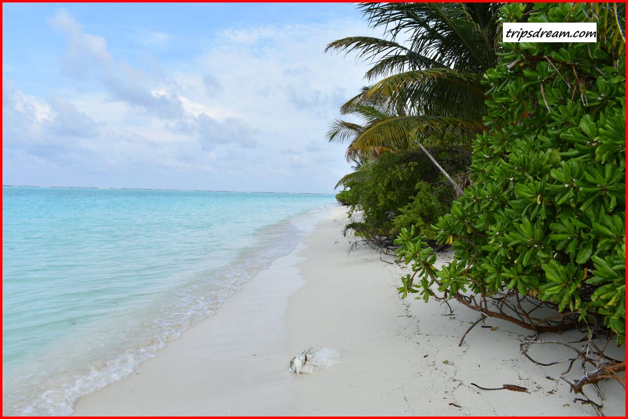 DSC_0103_Beach2