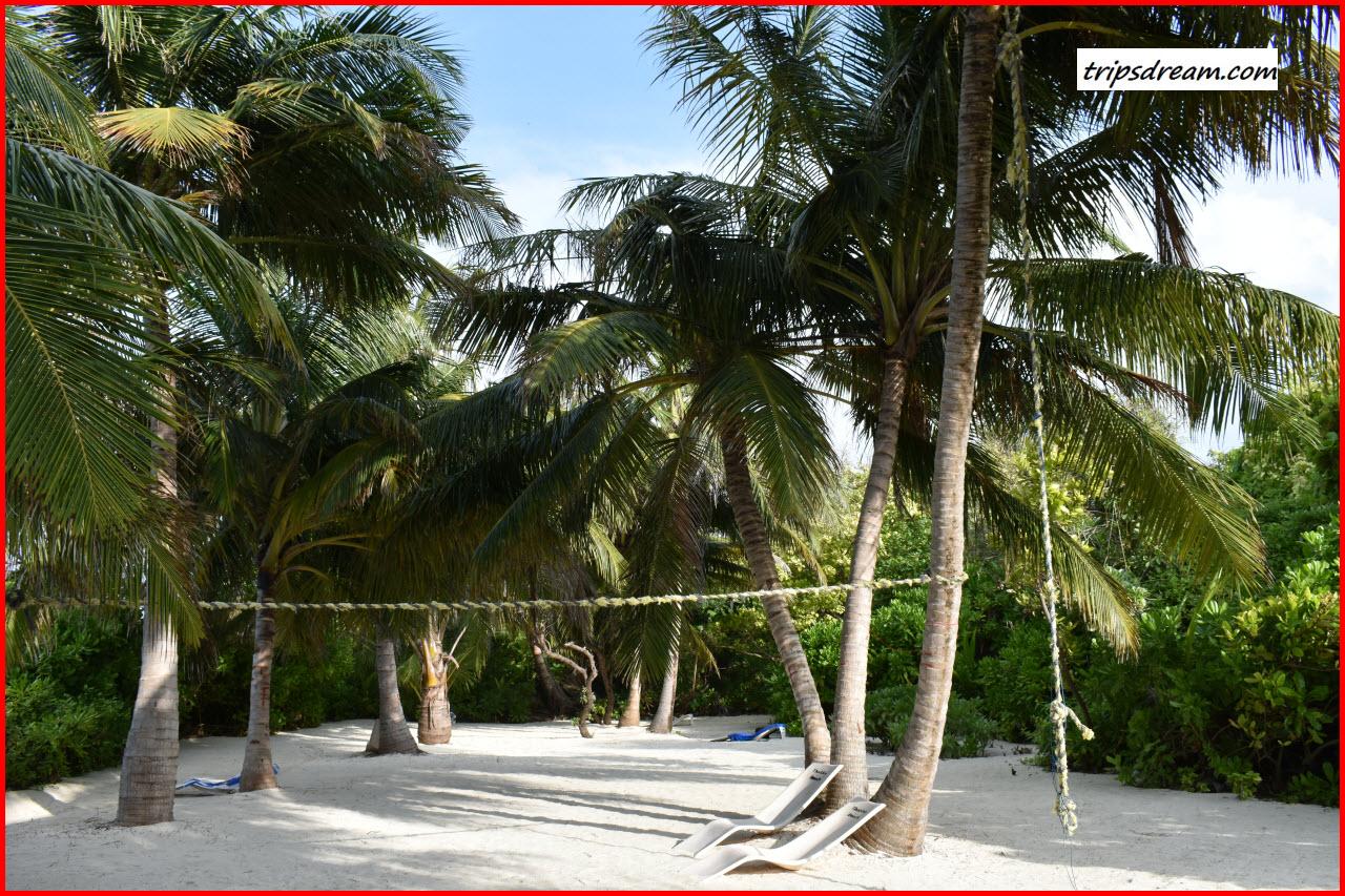 DSC_0358_BeachSport