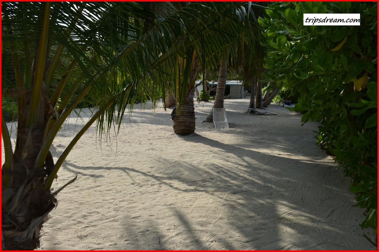 DSC_0362_Beach4