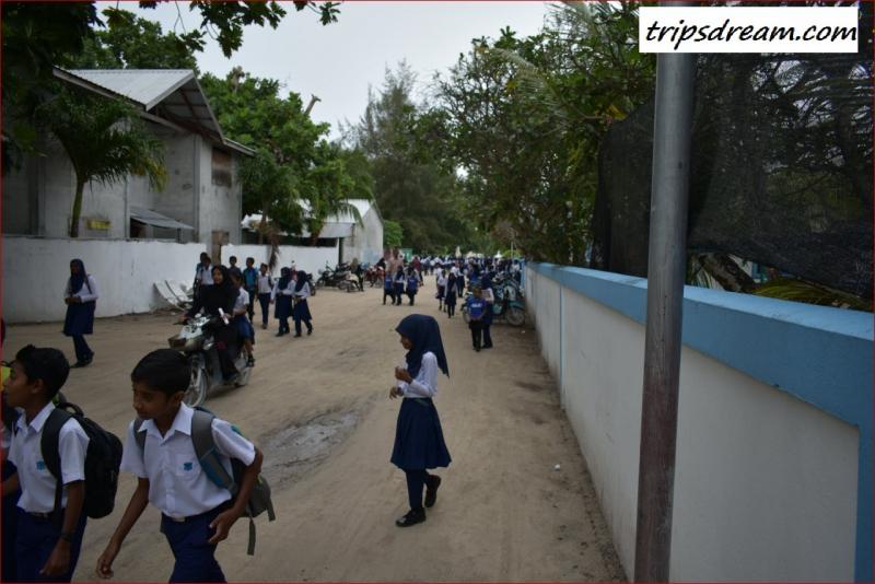 School_1280_854