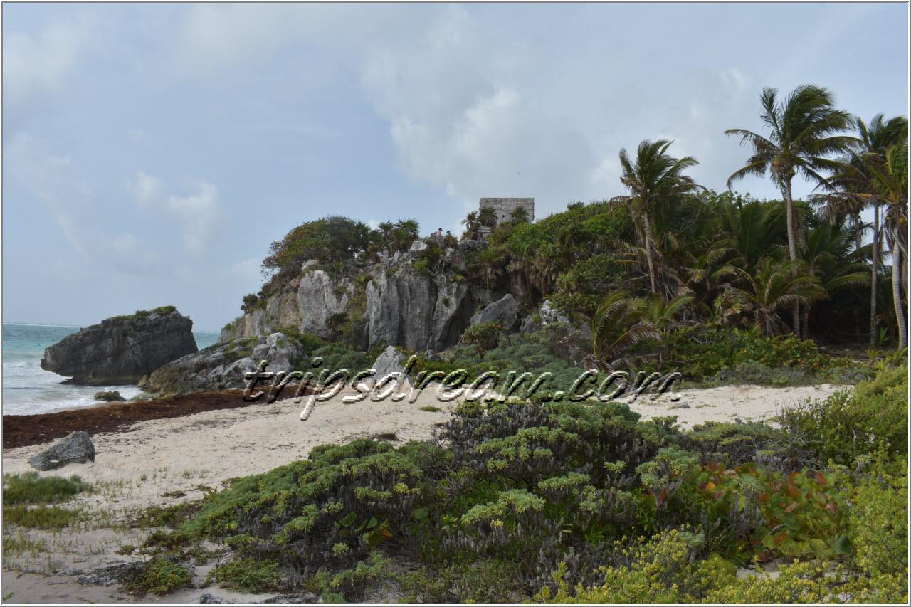 Тулум - пляж черепах