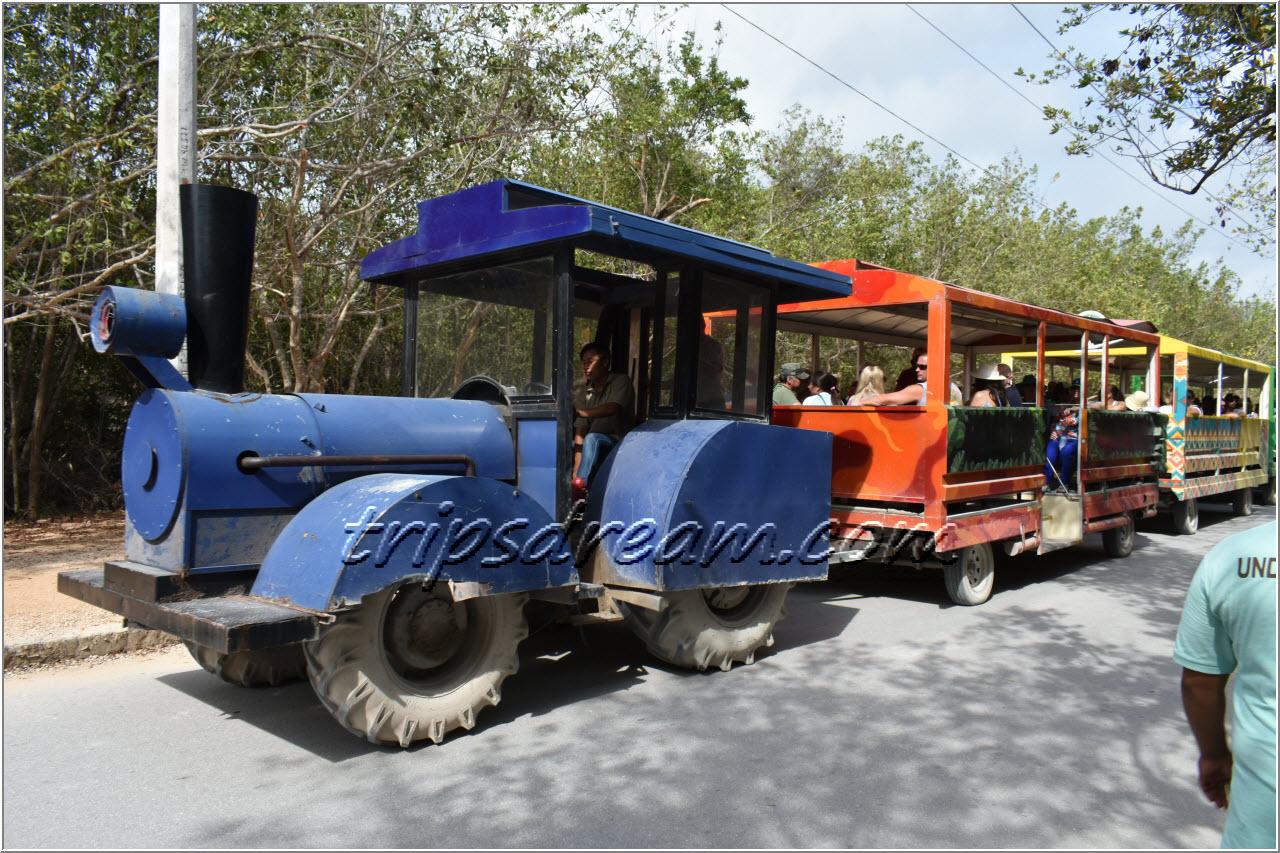 Тулум - поезд везет туристов