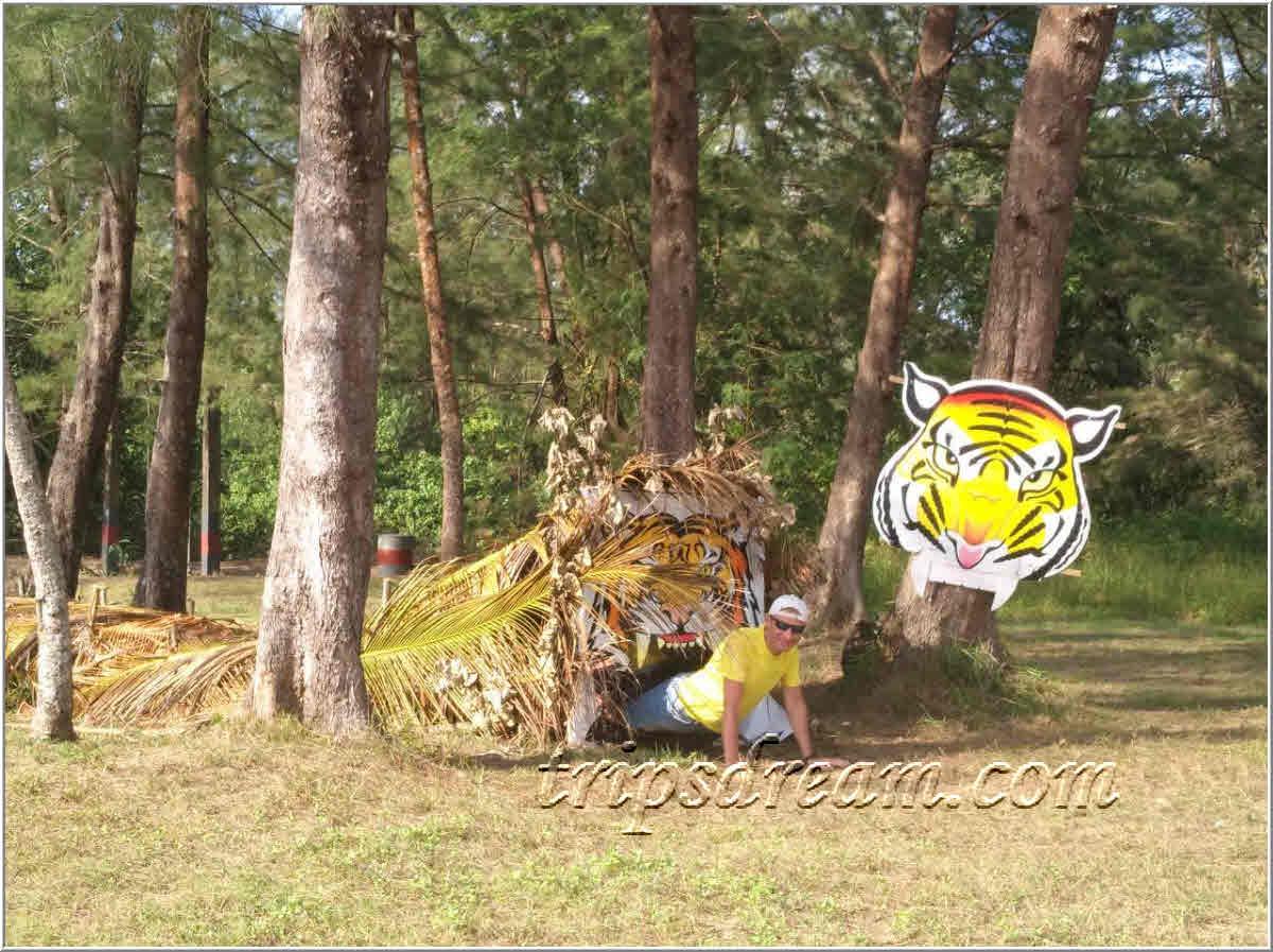999_Полоса с тигром