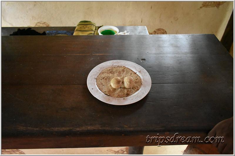 Яйца гиганских черепах. Призон Айленд (Prison Island). Занзибар