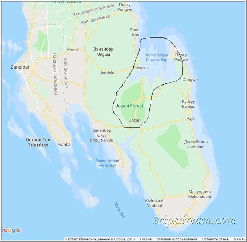 Парк Джозани на карте Занзибара