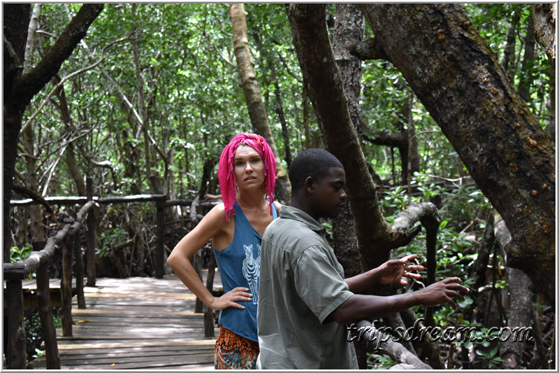 Таня с гидом в мангровых зарослях. Парк Джозани. Занзибар